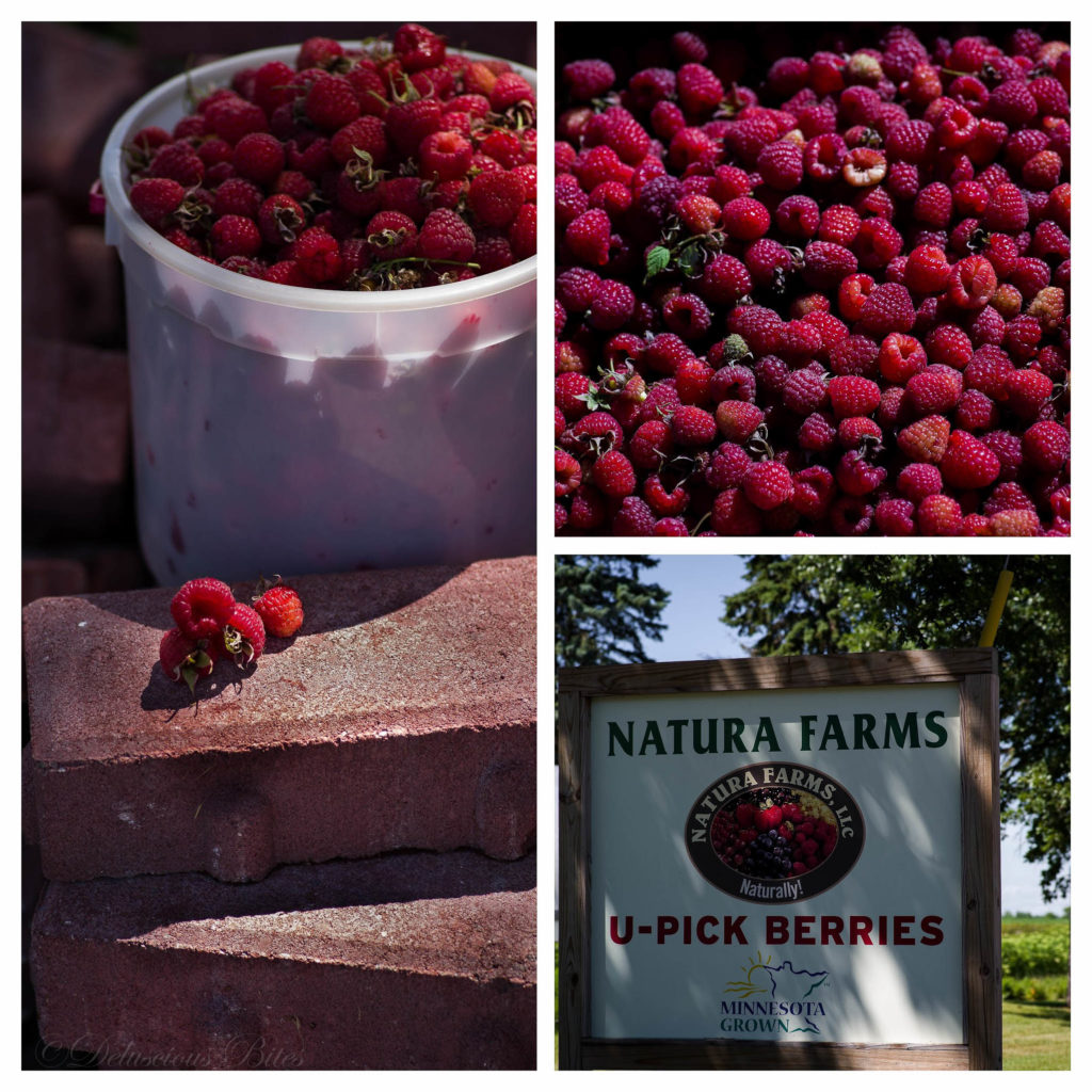 Raspberry Picking collage
